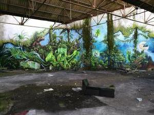 Graff1